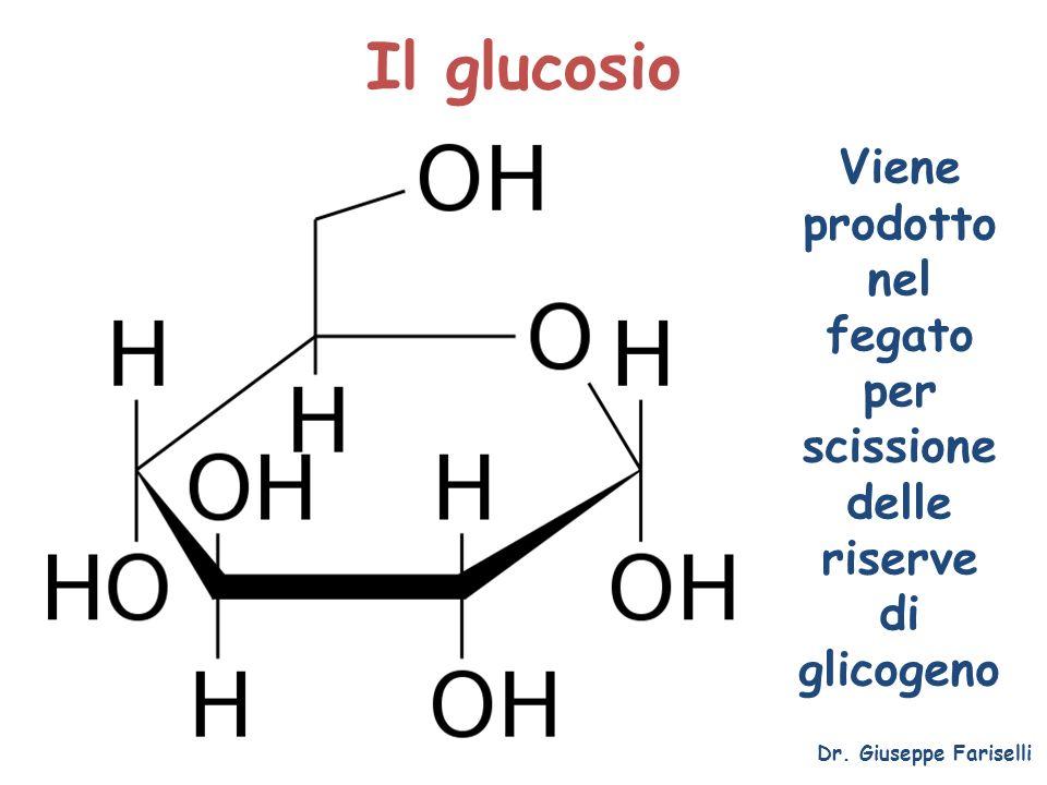 Il glucosio Dr. Giuseppe Fariselli Viene prodotto nel fegato per scissione delle riserve di glicogeno