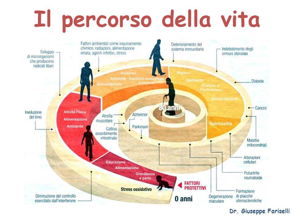 Il percorso della vita Dr. Giuseppe Fariselli