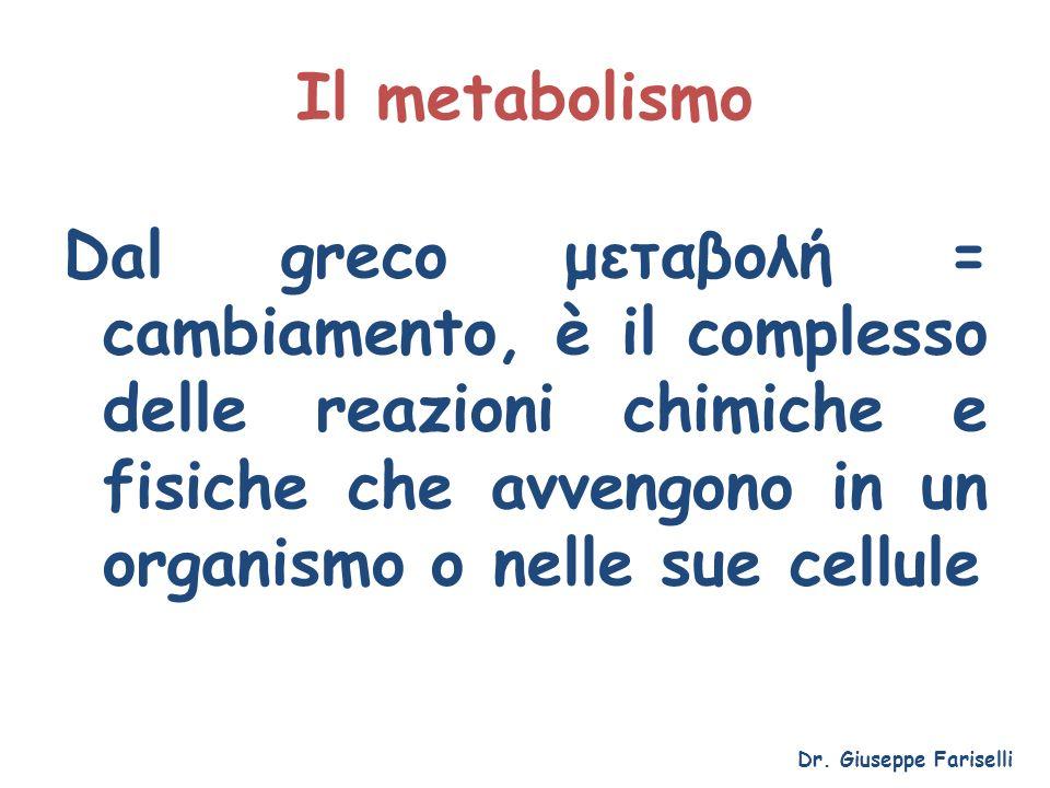 Il metabolismo Comprende 2 fasi: Catabolismo: degradazione di molecole complesse in molecole più semplici, produzione di energia, eliminazione di scorie Anabolismo: produzione di molecole complesse a partire da molecole più semplici Dr.