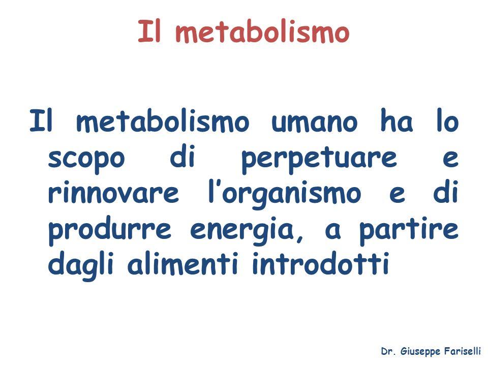 Il metabolismo Il metabolismo umano ha lo scopo di perpetuare e rinnovare lorganismo e di produrre energia, a partire dagli alimenti introdotti Dr. Gi