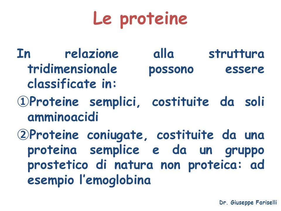 Le proteine In relazione alla struttura tridimensionale possono essere classificate in: Proteine semplici, costituite da soli amminoacidi Proteine con