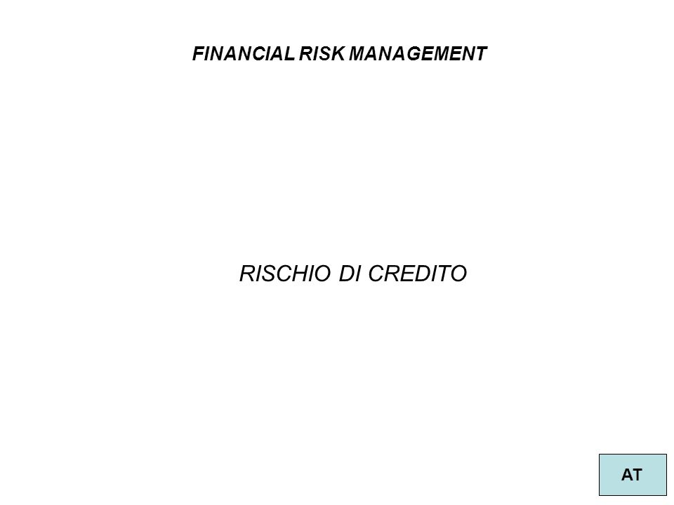 FINANCIAL RISK MANAGEMENT AT RISCHIO DI CREDITO