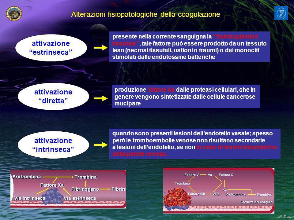 Alterazioni fisiopatologiche della coagulazione attivazione estrinseca attivazione diretta attivazione intrinseca presente nella corrente sanguigna la tromboplastina tissutale, tale fattore può essere prodotto da un tessuto leso (necrosi tissutali, ustioni o traumi) o dai monociti stimolati dalle endotossine batteriche produzione fattore Xa dalle proteasi cellulari, che in genere vengono sintetizzate dalle cellule cancerose mucipare quando sono presenti lesioni dellendotelio vasale; spesso però le tromboembolie venose non risultano secondarie a lesioni dellendotelio, se non in caso di lesioni traumatiche della parete venosa.