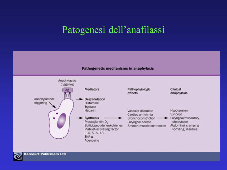Patogenesi dellanafilassi