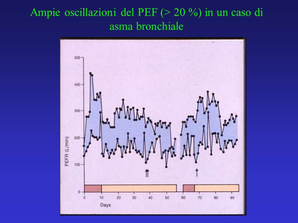 Ampie oscillazioni del PEF (> 20 %) in un caso di asma bronchiale
