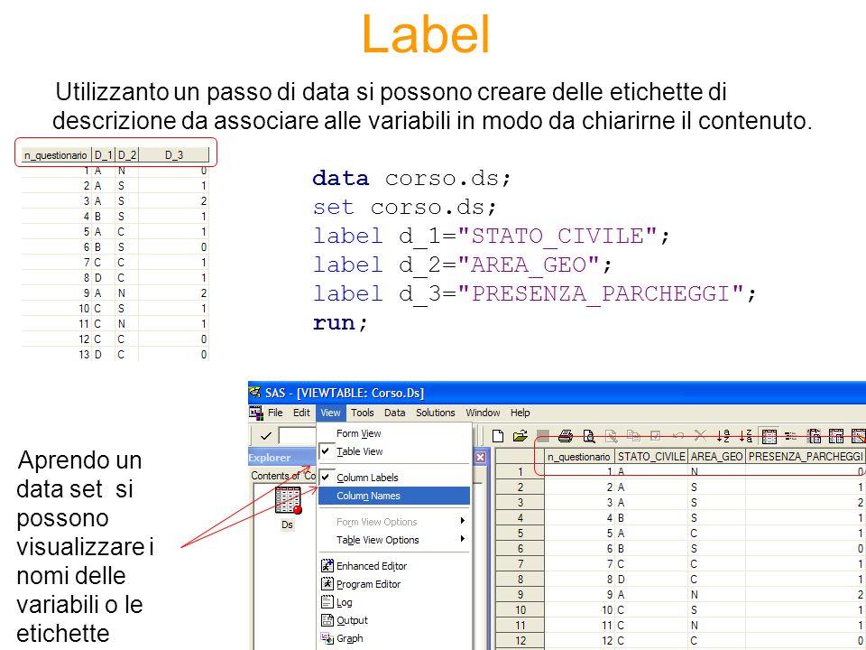 Label Utilizzanto un passo di data si possono creare delle etichette di descrizione da associare alle variabili in modo da chiarirne il contenuto. dat