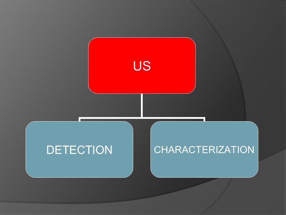 US DETECTIONCHARACTERIZATION