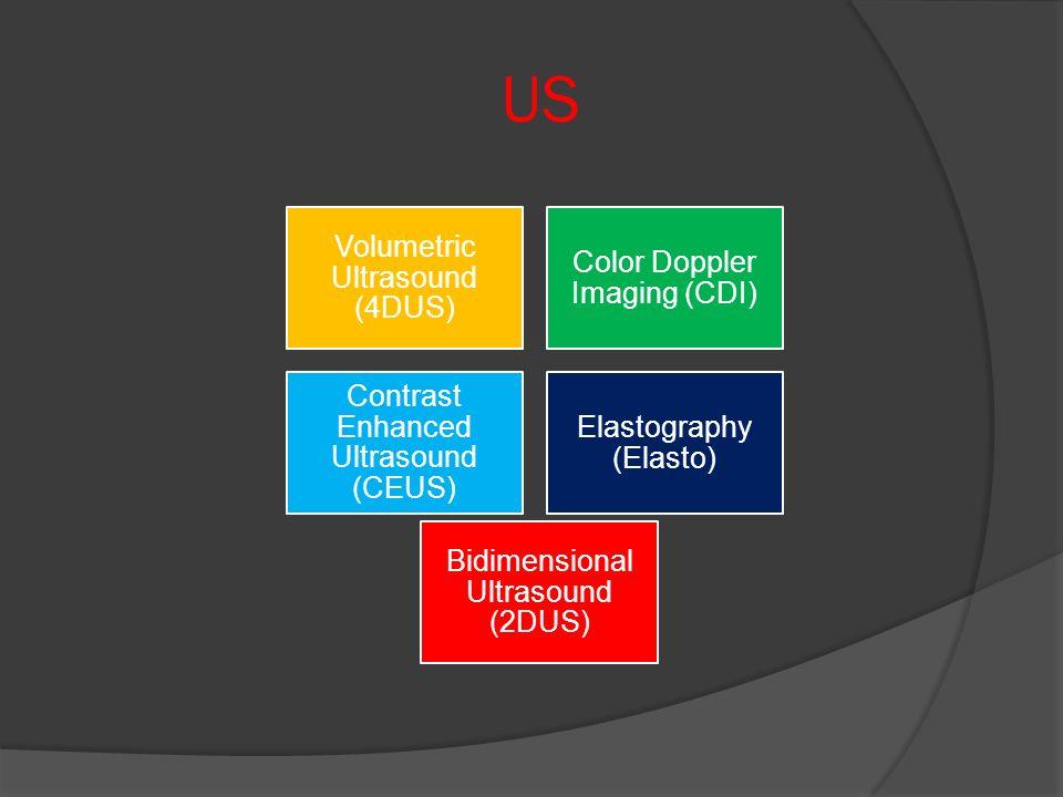 US Volumetric Ultrasound (4DUS) Color Doppler Imaging (CDI) Contrast Enhanced Ultrasound (CEUS) Elastography (Elasto) Bidimensional Ultrasound (2DUS)