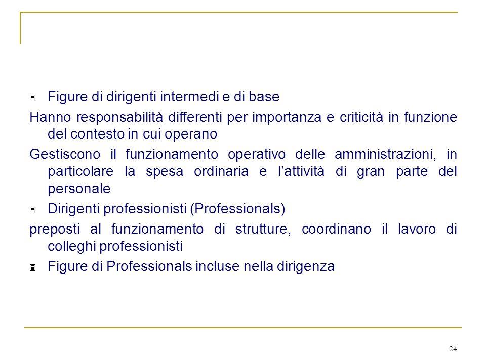 24 3 Figure di dirigenti intermedi e di base Hanno responsabilità differenti per importanza e criticità in funzione del contesto in cui operano Gestis