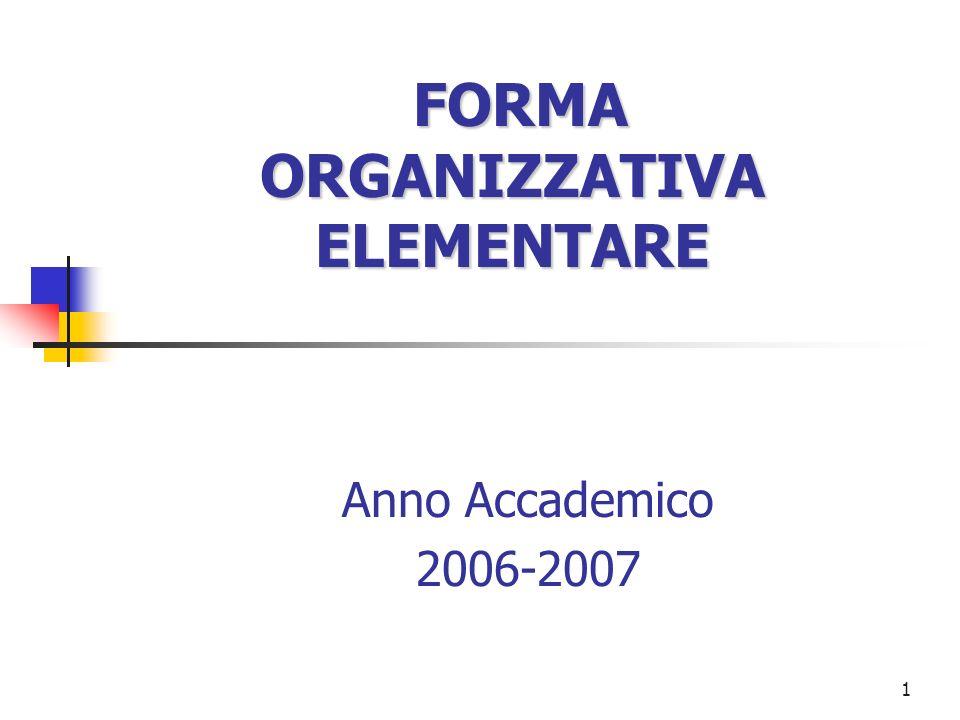 1 FORMA ORGANIZZATIVA ELEMENTARE Anno Accademico 2006-2007