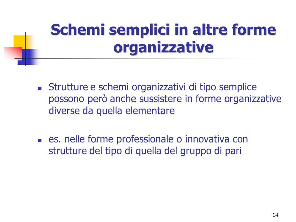 14 Schemi semplici in altre forme organizzative Strutture e schemi organizzativi di tipo semplice possono però anche sussistere in forme organizzative