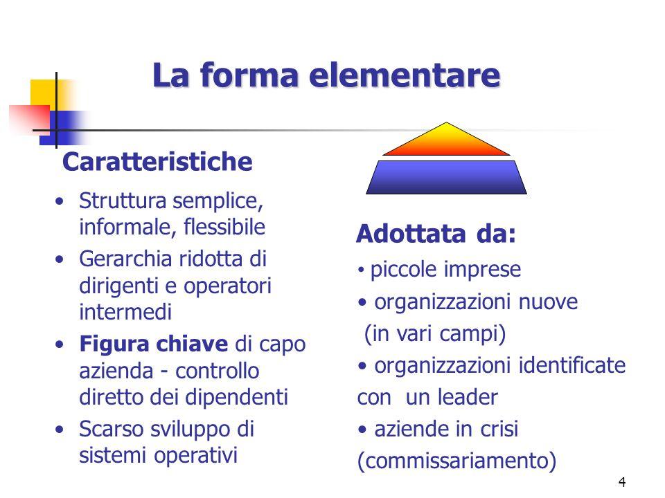 4 Struttura semplice, informale, flessibile Gerarchia ridotta di dirigenti e operatori intermedi Figura chiave di capo azienda - controllo diretto dei