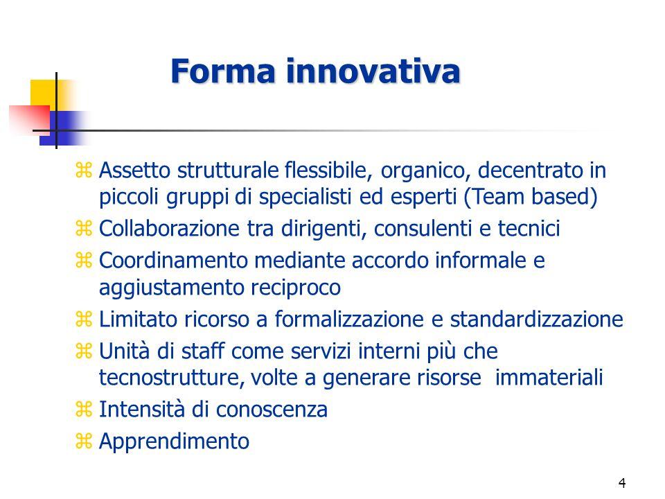3 Forma innovativa E orientata a: - introdurre sofisticate innovazioni, - gestire continuativamente la creatività NUCLEO OPERATIVO SERVIZI V.S.