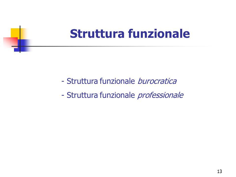13 Struttura funzionale - Struttura funzionale burocratica - Struttura funzionale professionale