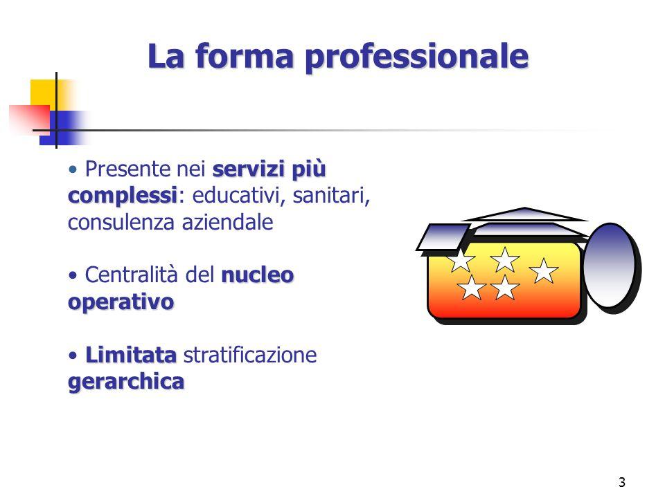 3 La forma professionale servizi più complessi Presente nei servizi più complessi: educativi, sanitari, consulenza aziendale nucleo operativo Centrali