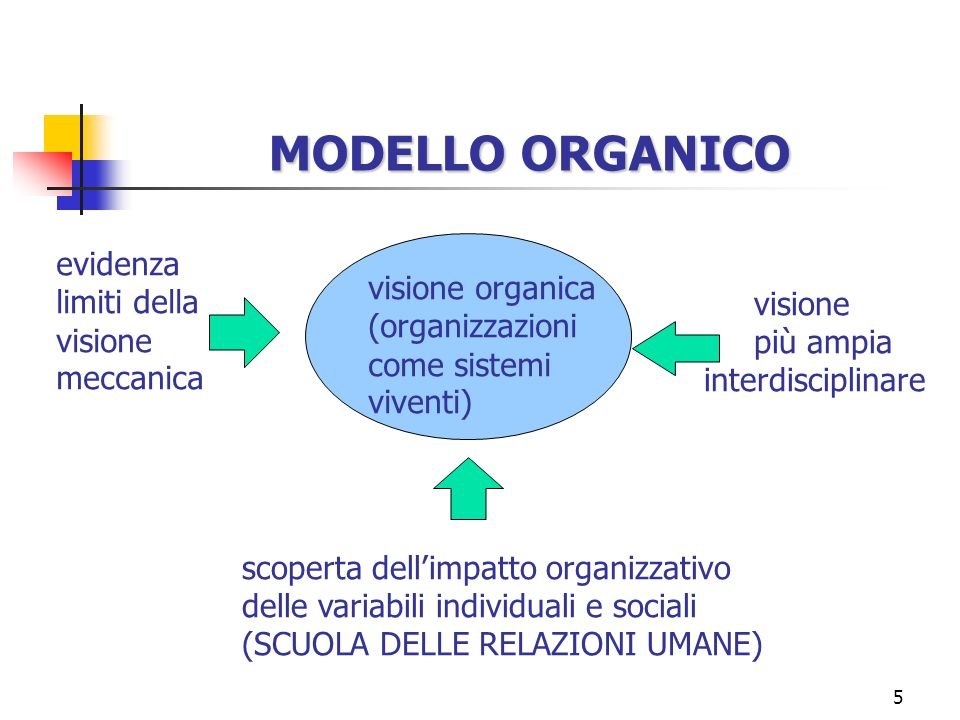 5 MODELLO ORGANICO visione organica (organizzazioni come sistemi viventi) scoperta dellimpatto organizzativo delle variabili individuali e sociali (SC