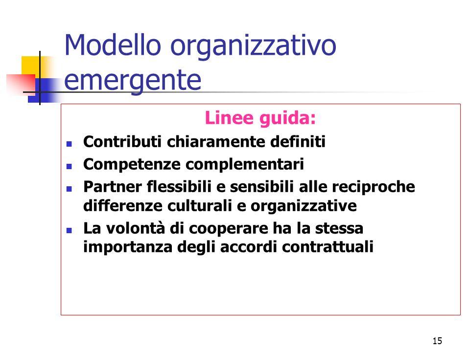 15 Modello organizzativo emergente Linee guida: Contributi chiaramente definiti Competenze complementari Partner flessibili e sensibili alle reciproche differenze culturali e organizzative La volontà di cooperare ha la stessa importanza degli accordi contrattuali