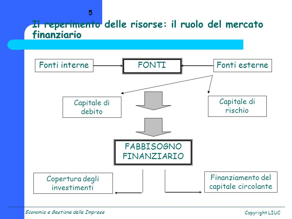 Economia e Gestione delle Imprese Copyright LIUC 5 finanziario Il reperimento delle risorse: il ruolo del mercato finanziario Fonti interneFonti ester
