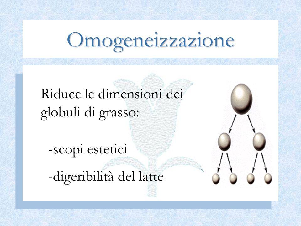 Omogeneizzazione Riduce le dimensioni dei globuli di grasso: scopi estetici digeribilità del latte