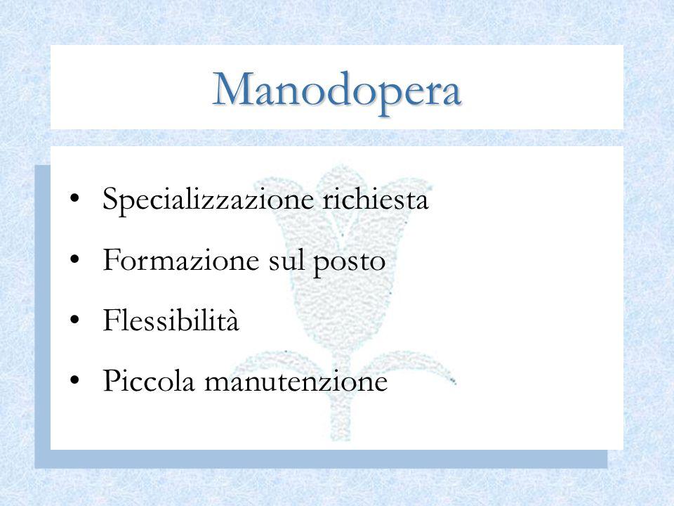 Manodopera Specializzazione richiesta Formazione sul posto Flessibilità Piccola manutenzione