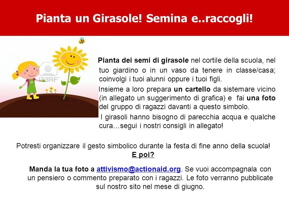 Pianta dei semi di girasole nel cortile della scuola, nel tuo giardino o in un vaso da tenere in classe/casa; coinvolgi i tuoi alunni oppure i tuoi figli.