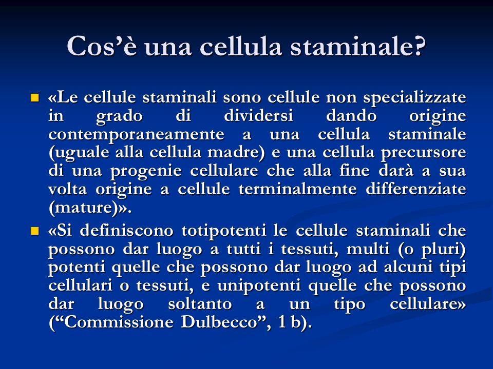 Cosè una cellula staminale? «Le cellule staminali sono cellule non specializzate in grado di dividersi dando origine contemporaneamente a una cellula