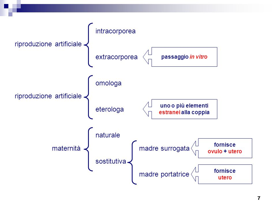 7 riproduzione artificiale omologa eterologa riproduzione artificiale intracorporea extracorporea uno o più elementi estranei alla coppia passaggio in