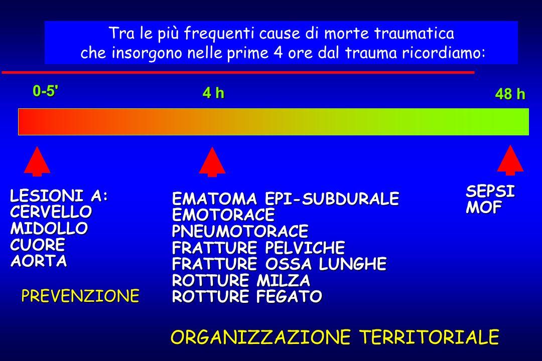 0-5' 4 h 48 h PREVENZIONE ORGANIZZAZIONE TERRITORIALE LESIONI A: CERVELLO MIDOLLO CUORE AORTA EMATOMA EPI-SUBDURALE EMOTORACE PNEUMOTORACE FRATTURE PE