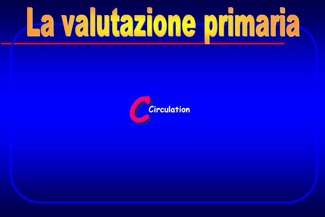 C C Circulation