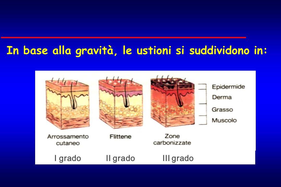 In base alla gravità, le ustioni si suddividono in: GRAVITA I gradoIII gradoII grado
