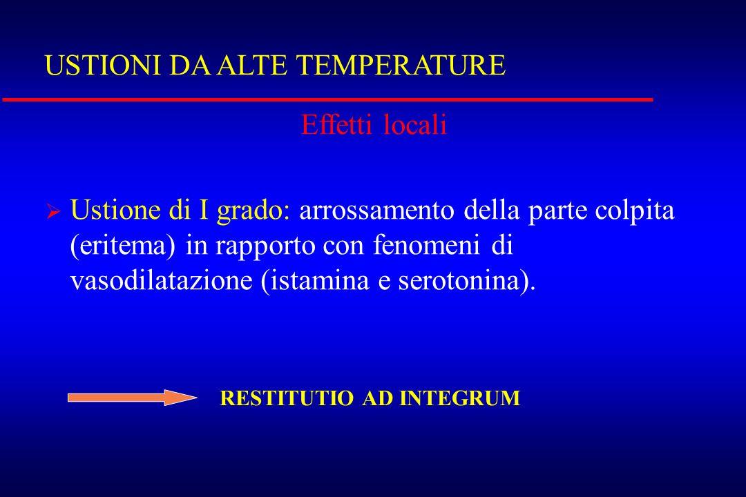 USTIONI DA ALTE TEMPERATURE Effetti locali Ustione di I grado: arrossamento della parte colpita (eritema) in rapporto con fenomeni di vasodilatazione