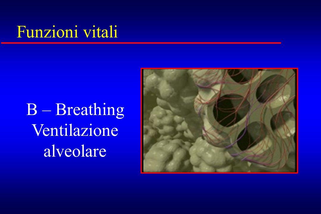 Funzioni vitali B – Breathing Ventilazione alveolare