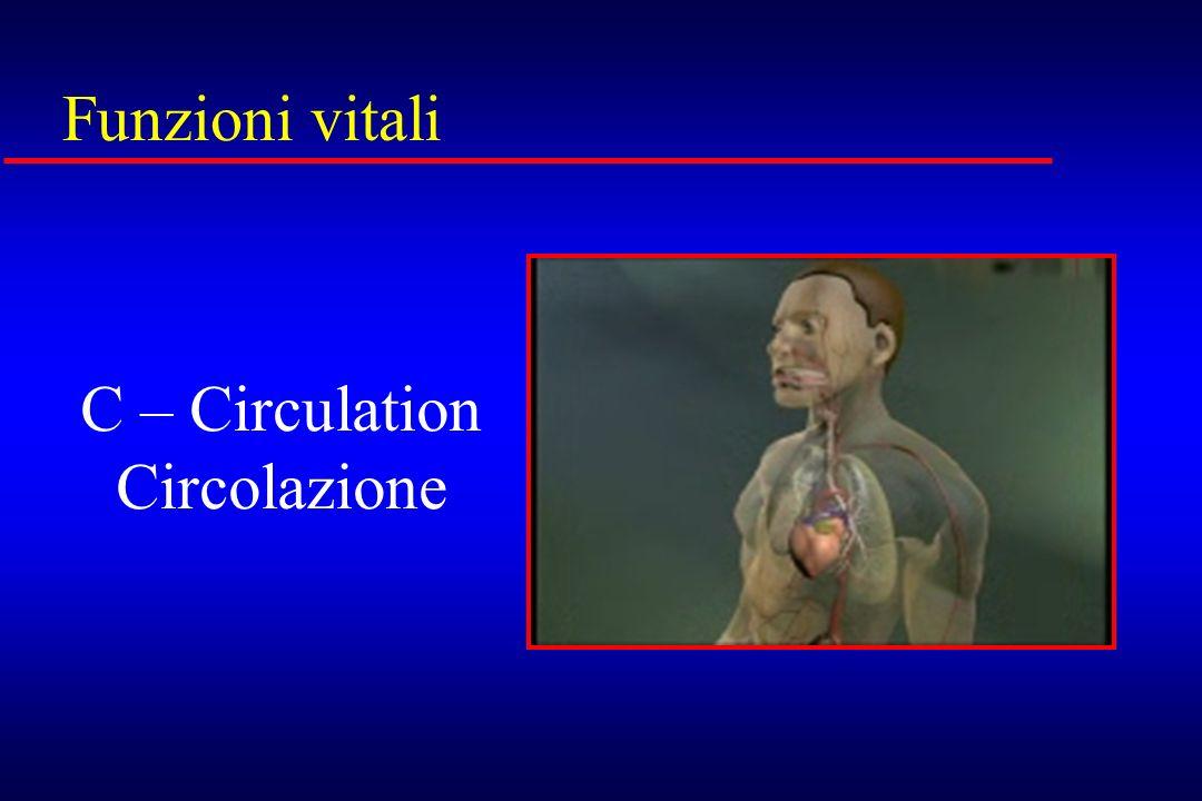 Funzioni vitali C – Circulation Circolazione