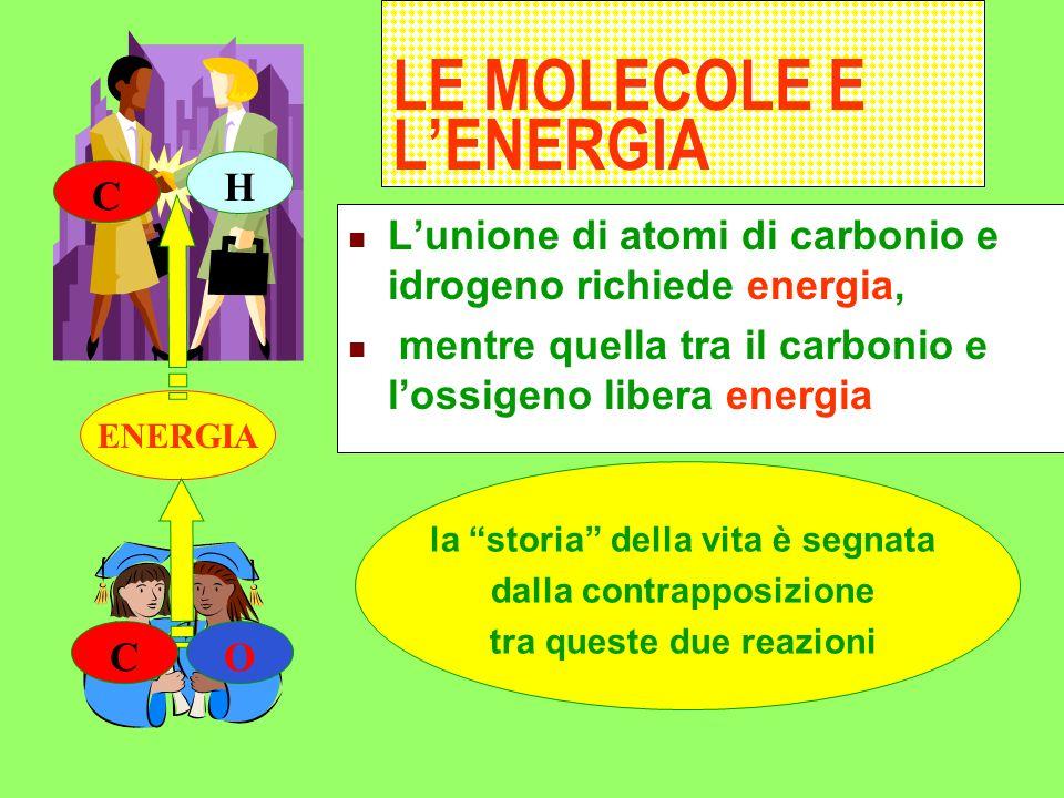 I viventi sono fatti di lunghe catene di atomi Carbonio Idrogeno Ossigeno Il carbonio C si trova nellaria legato allossigeno nella molecola di anidrid