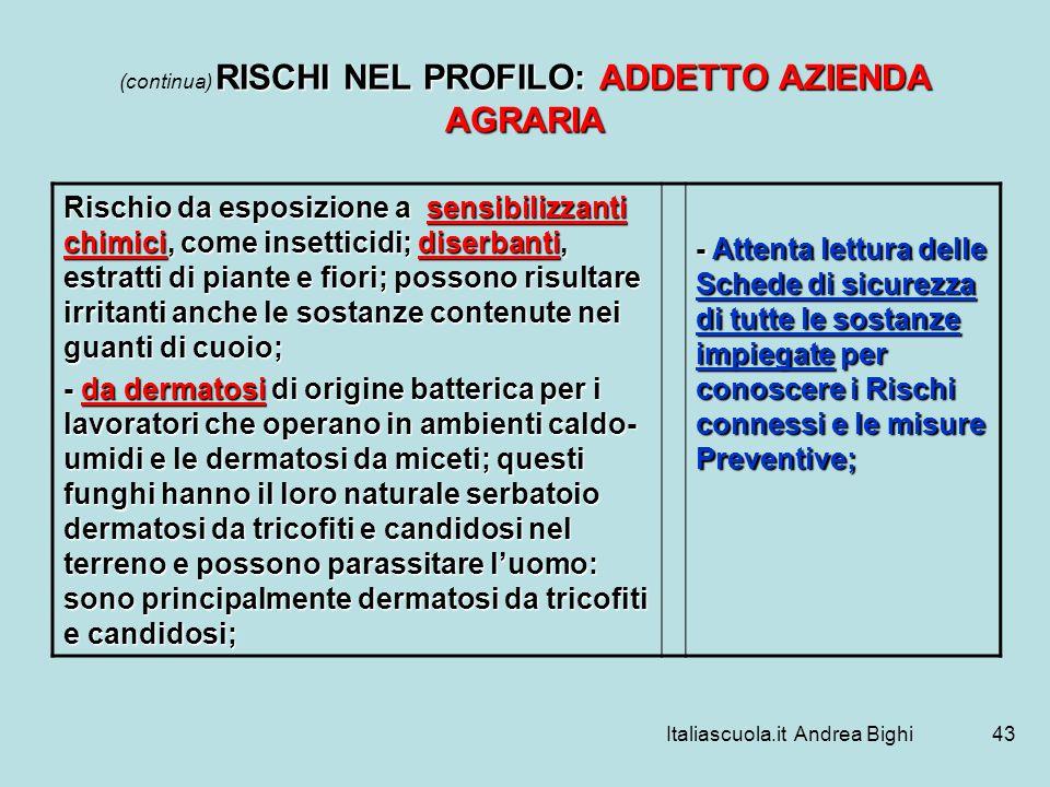 Italiascuola.it Andrea Bighi43 RISCHI NEL PROFILO: ADDETTO AZIENDA AGRARIA (continua) RISCHI NEL PROFILO: ADDETTO AZIENDA AGRARIA Rischio da esposizio