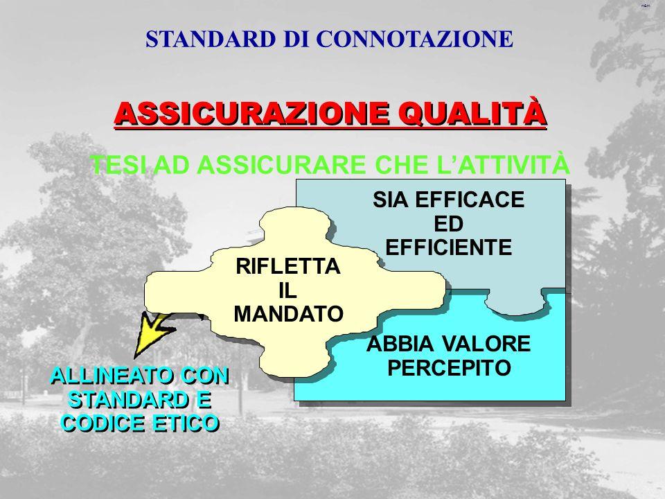 m&m ASSICURAZIONE QUALITÀ TESI AD ASSICURARE CHE LATTIVITÀ ABBIA VALORE PERCEPITO ALLINEATO CON STANDARD E CODICE ETICO ALLINEATO CON STANDARD E CODICE ETICO SIA EFFICACE ED EFFICIENTE RIFLETTA IL MANDATO STANDARD DI CONNOTAZIONE