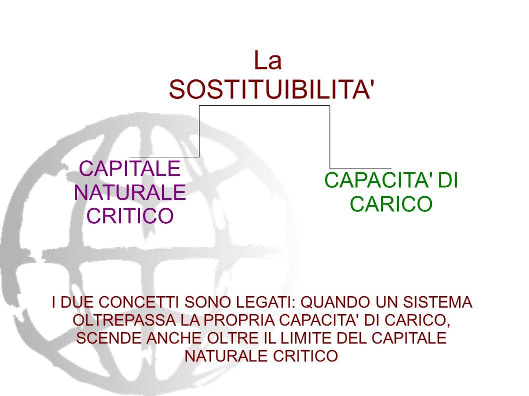 Definizione di sviluppo sostenibile secondo il RAPPORTO BRUNDTLAND (Our common Future) 1987...quello che soddisfa i bisogni del presente senza comprom