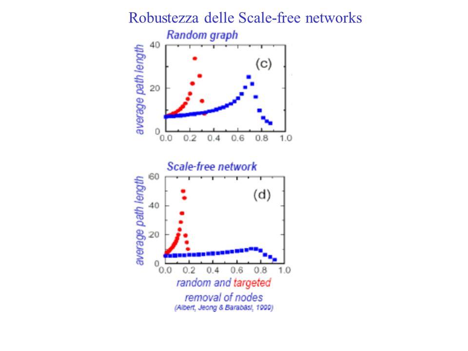 Robustezza delle Scale-free networks