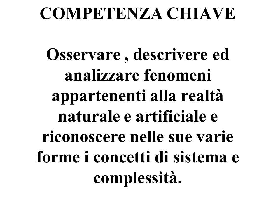 COMPETENZA CHIAVE Osservare, descrivere ed analizzare fenomeni appartenenti alla realtà naturale e artificiale e riconoscere nelle sue varie forme i concetti di sistema e complessità.