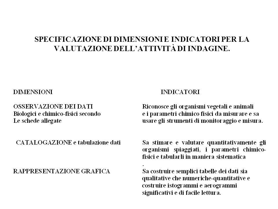 SPECIFICAZIONE DI DIMENSIONI E INDICATORI PER LA VALUTAZIONE DELLATTIVITÀ DI INDAGINE.
