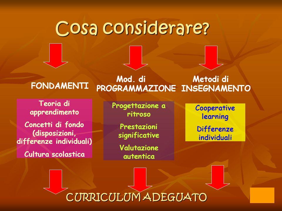 Cosa considerare? FONDAMENTI Mod. di PROGRAMMAZIONE Metodi di INSEGNAMENTO CURRICULUM ADEGUATO Cooperative learning Differenze individuali Teoria di a