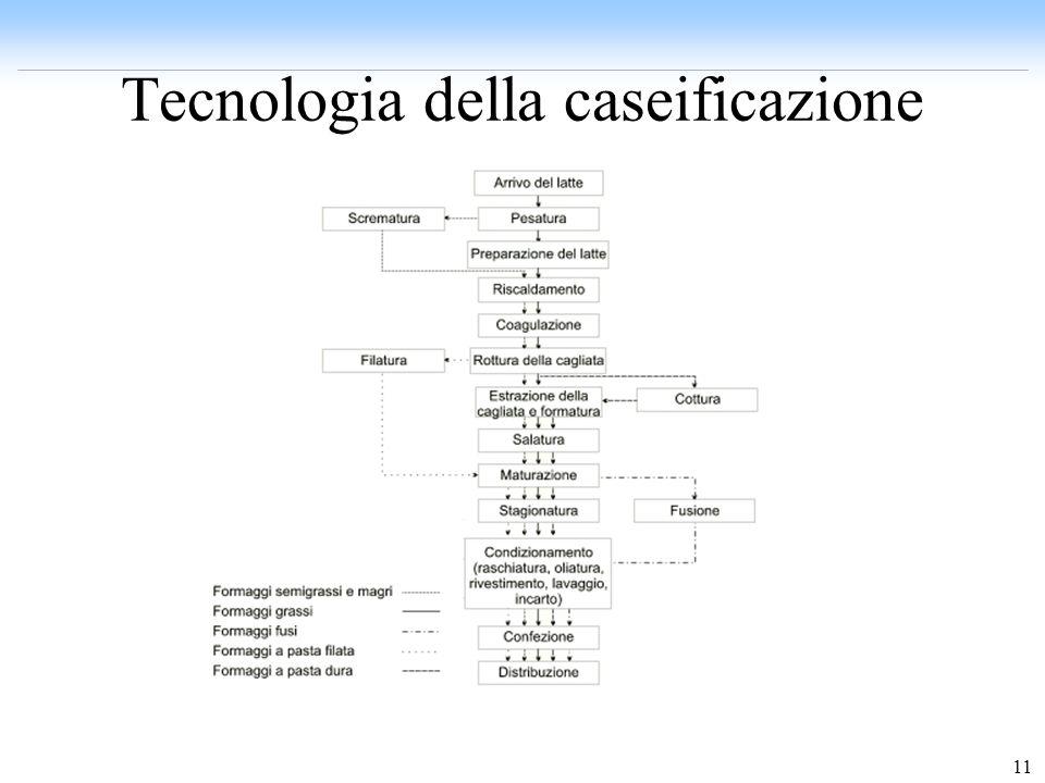 11 Tecnologia della caseificazione (1)