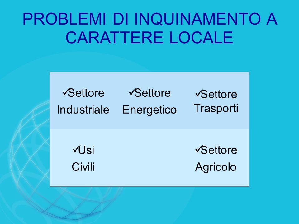 PROBLEMI DI INQUINAMENTO A CARATTERE LOCALE Settore Industriale Settore Energetico Settore Trasporti Usi Civili Settore Agricolo