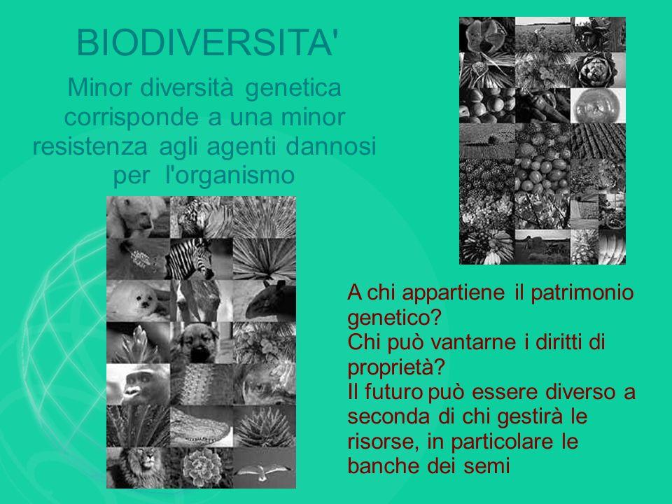 BIODIVERSITA' Minor diversità genetica corrisponde a una minor resistenza agli agenti dannosi per l'organismo A chi appartiene il patrimonio genetico?