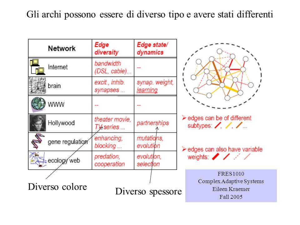 Gli archi possono essere di diverso tipo e avere stati differenti FRES1010 Complex Adaptive Systems Eileen Kraemer Fall 2005 Diverso colore Diverso sp
