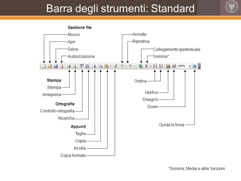 Barra degli strumenti: Standard Gestione file Nuovo Apri Salva Autorizzazione Stampa Anteprima Ortografia Controllo ortografia Ricerche Appunti Taglia