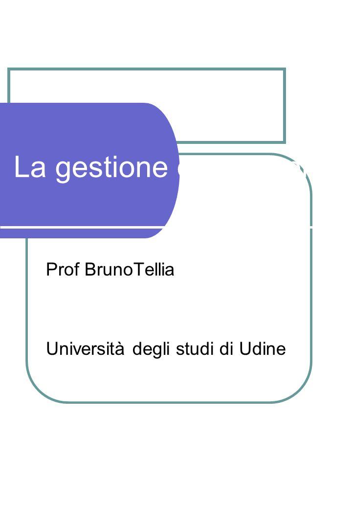 La gestione dei gruppi Prof BrunoTellia Università degli studi di Udine