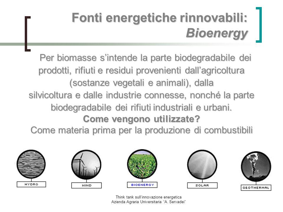 Think tank sull'innovazione energetica Azienda Agraria Universitaria A. Servadei Fonti energetiche rinnovabili: Bioenergy Per biomasse sintende la par