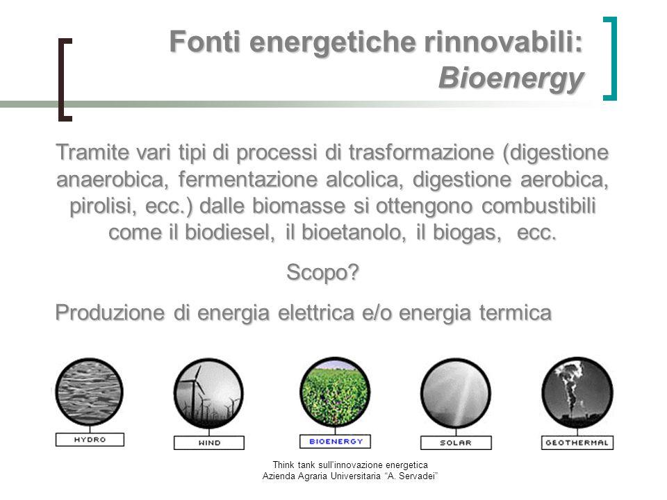 Think tank sull'innovazione energetica Azienda Agraria Universitaria A. Servadei Fonti energetiche rinnovabili: Bioenergy Tramite vari tipi di process