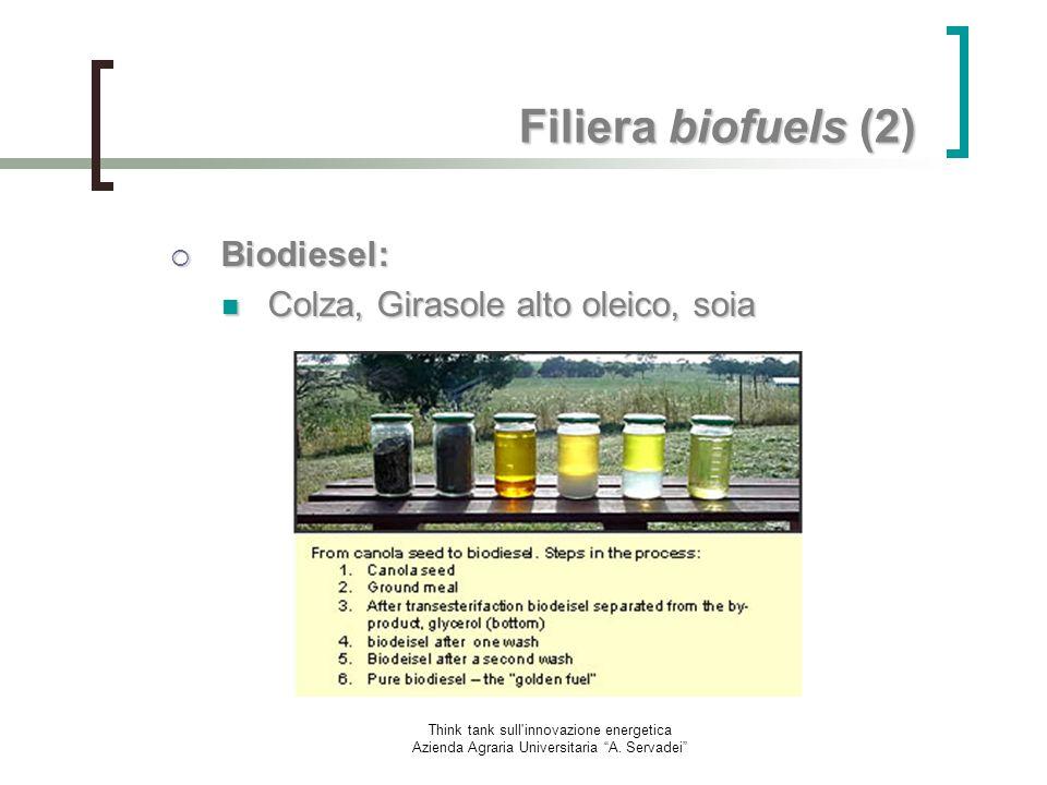 Think tank sull'innovazione energetica Azienda Agraria Universitaria A. Servadei Filiera biofuels (2) Biodiesel: Biodiesel: Colza, Girasole alto oleic